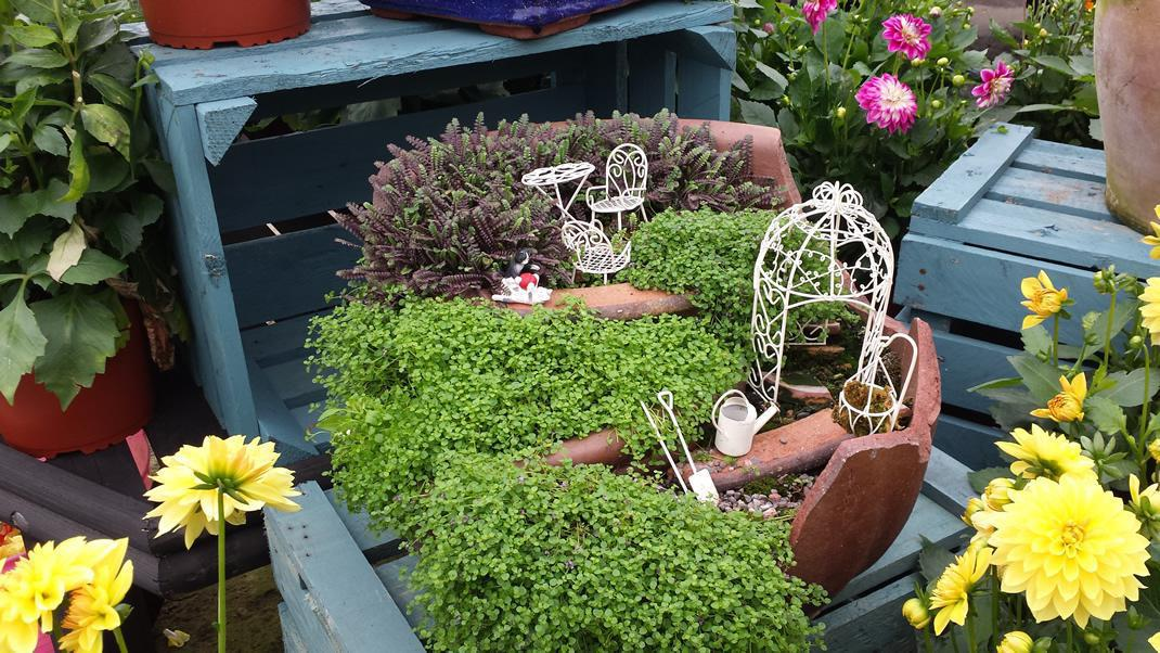 fairy gardens at azure garden centre